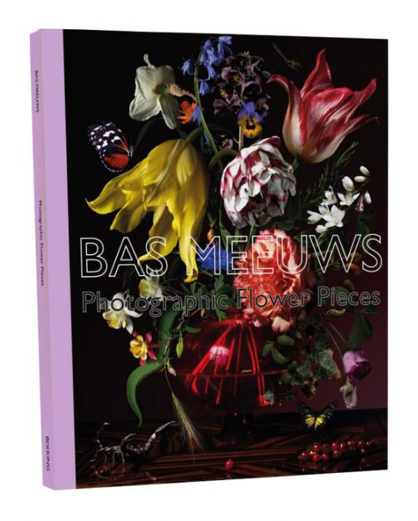 Bas Meeuws Galerie Wilms