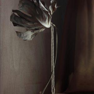 Galerie WIlms Suzanne Jongmans